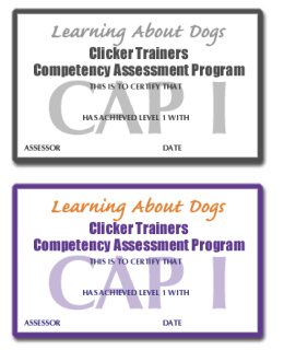Competency Assessment Programme